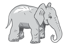 Elephant, Agile, Animal, Sketch, Requirements, Story Telling