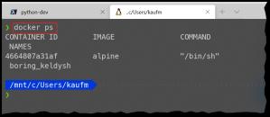 See docker container in ubuntu